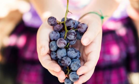 Hoe gezond zijn druiven?